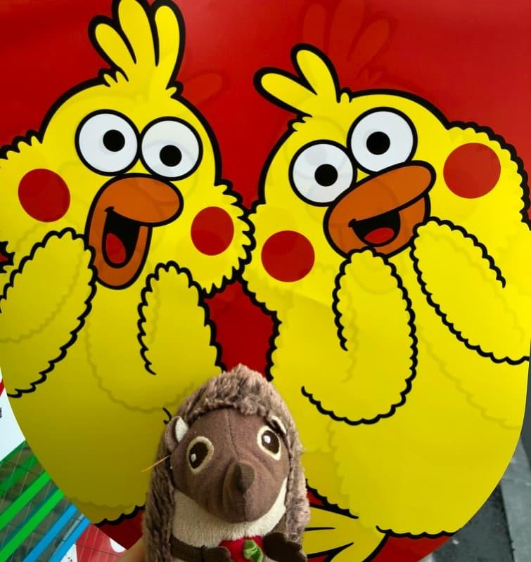 22 Die Hühner freuen sich