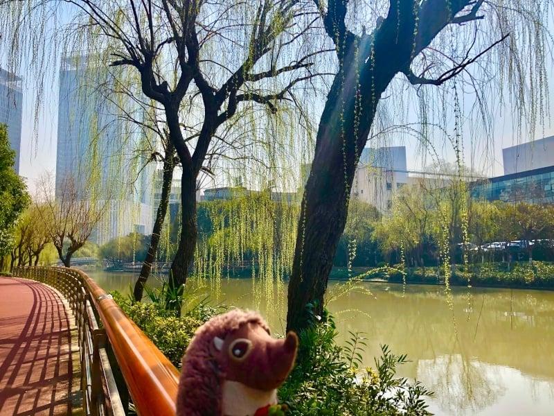 32 Spaziergang am Fluss