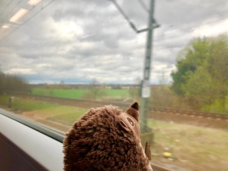 48 Im Zug nach Hause