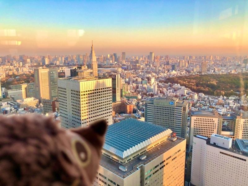 Paula Igel in Tokyo, Japan 20