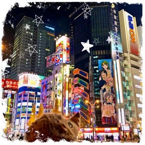 Paula Igel in Tokyo Japan Story