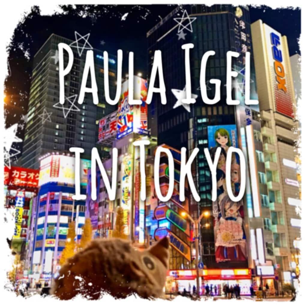 Paula Igel in Tokyo Japan