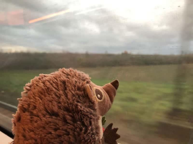 Schon wieder im Zug nach Franklfurt