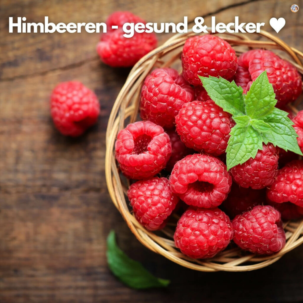 Himbeer Dessert