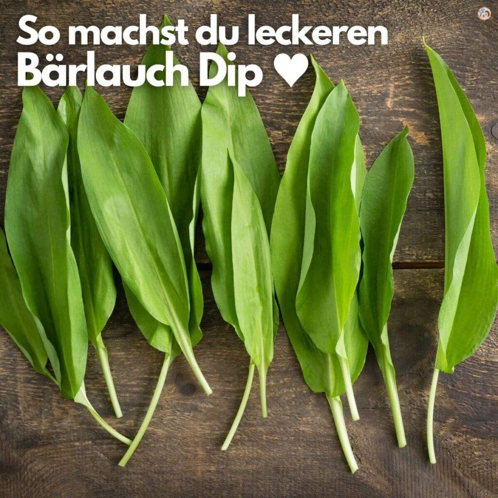 Bärlauch Dip