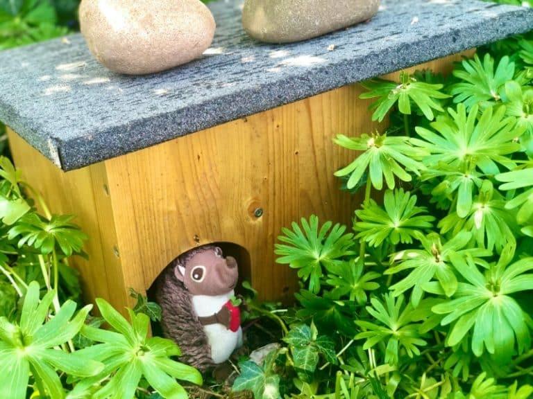 Paula Igel im Garten nach dem Winterschlaf 1