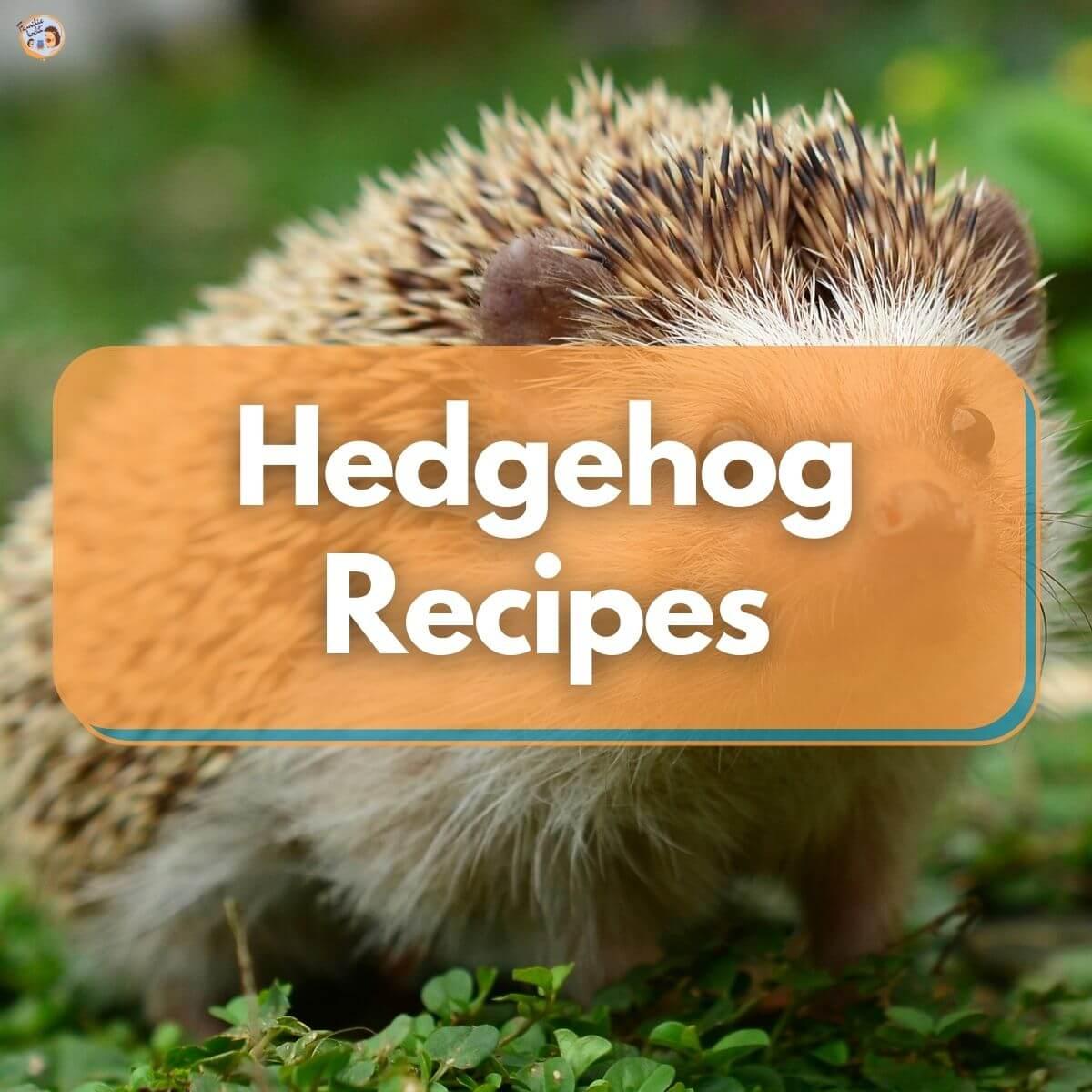 Hedgehog recipes