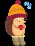 宝拉刺猬冬季食谱