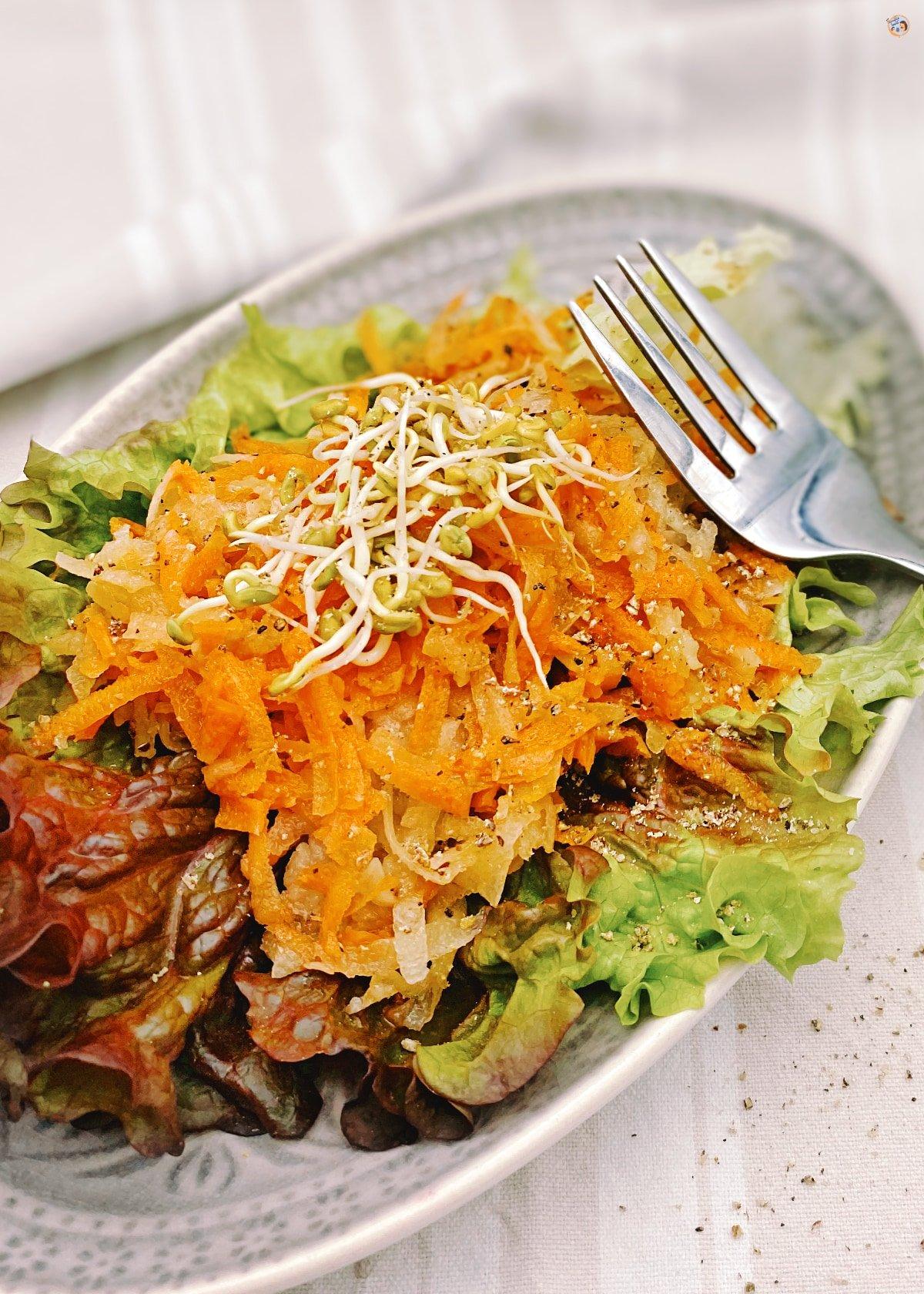 Yacón Salat mit Karotten 1