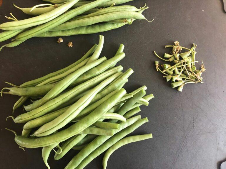 Grüne Bohnen mit Quinoa
