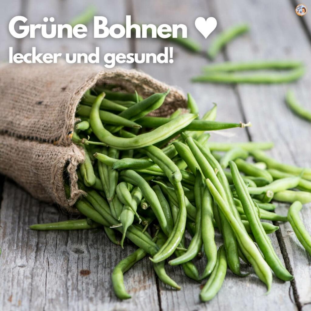 Grüne Bohnen lecker und gesund